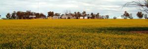 rural wifi for farmers